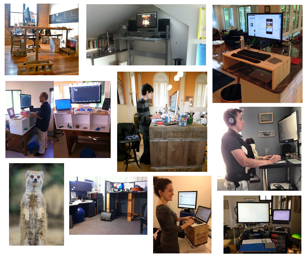 Year of the Standing Desk